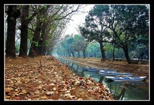 Colors of autumn by Naeem Rashid