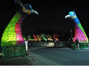 Giant coloful models of peacock dot the canal road as part the Jashan-e-Baharan celebrations
