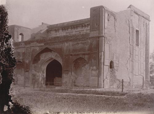 Gulabi Bagh6