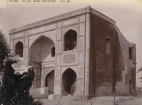 Gulabi Bagh7